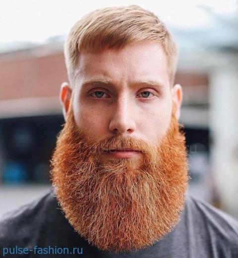 Модная мужская борода для рыжеволосых мужчин 2021